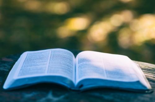 bible florilege